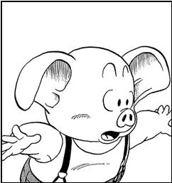pig-kin